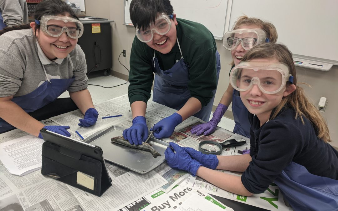 St. Patrick Students Hooked on Science through Trout Project